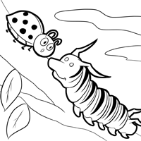 monarch coloring page 3