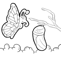 Monarch Coloring Page 19